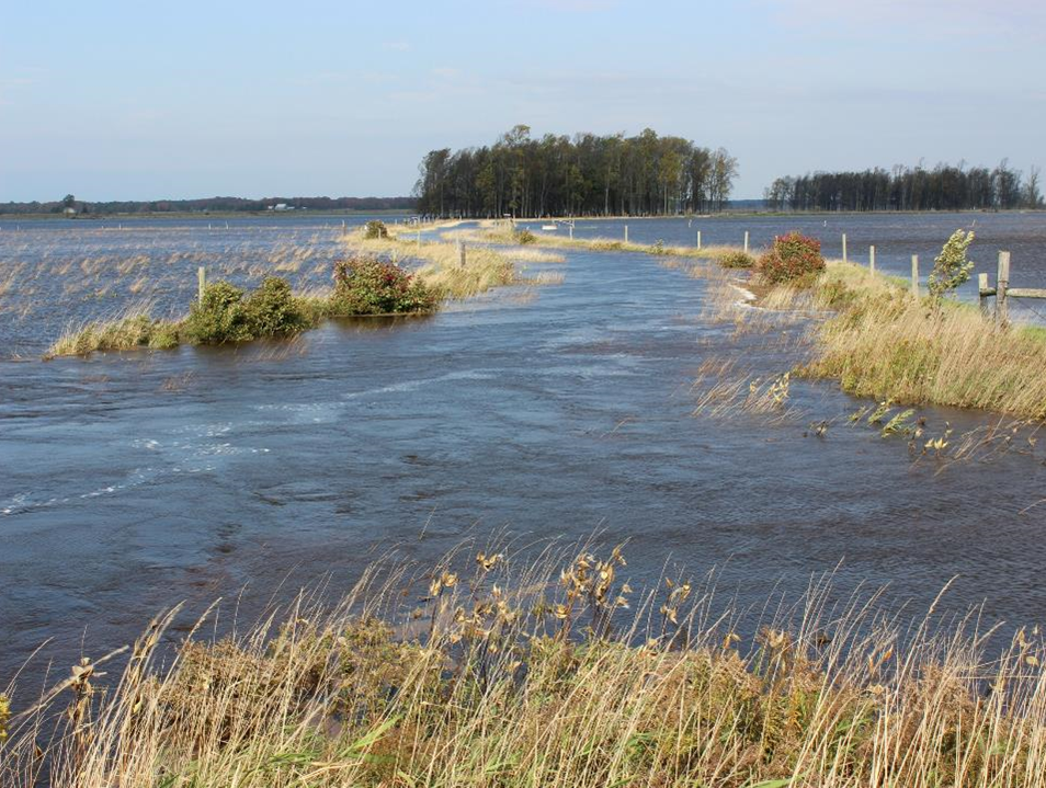 Anticipated climate change impacts for Lake Huron include water level fluctuations. Photo credit: BPBA