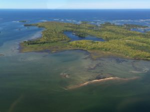 Some islands contain coastal wetlands, including Sandy Island pictured here in eastern Georgian Bay. Photo credit: Ellen Perschbacher