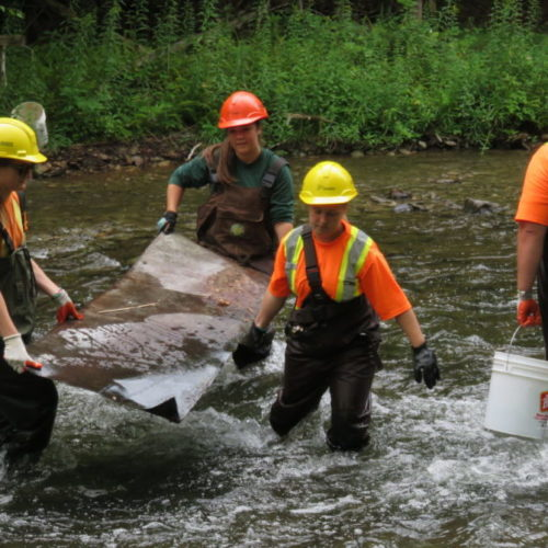 Volunteers engaged in stream restoration efforts in a Lake Huron tributary. Photo credit: MSIA